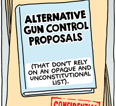 Alternative Gun Control Proposals